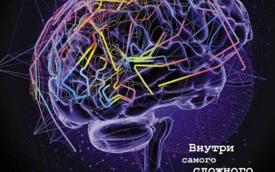 Как работает ваш мозг
