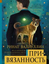 Привязанность Валиуллин Ринат Рифович.